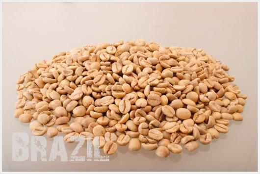 ブラジル コーヒー生豆メイン1