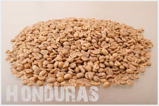 ホンジュラス コーヒー生豆