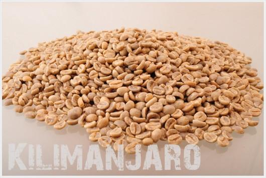 キリマンジャロ コーヒー生豆
