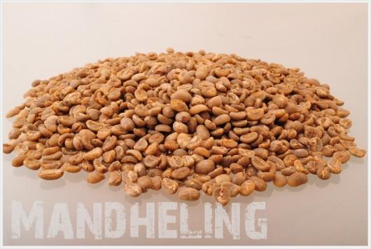 マンデリン コーヒー生豆
