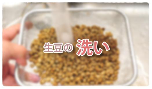 生豆の洗いタイトル