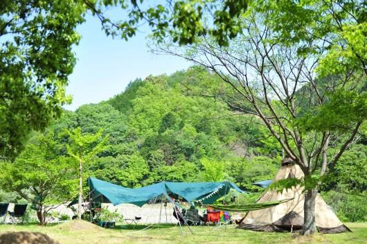 キャンプメインサイト