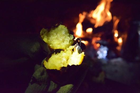 焚き火焼き芋