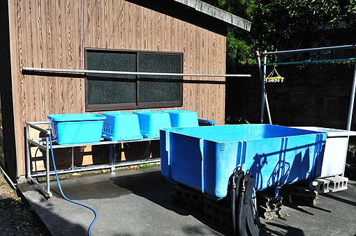ダイビング器材洗い場