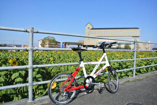 冬のひまわり畑と自転車
