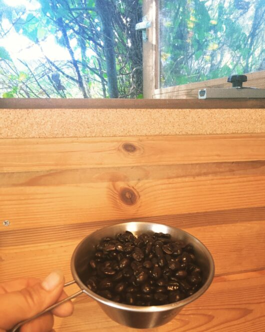 シェラカップに入ったコーヒー豆